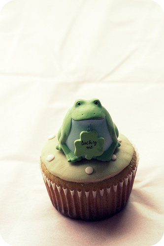 cute cupcake photos